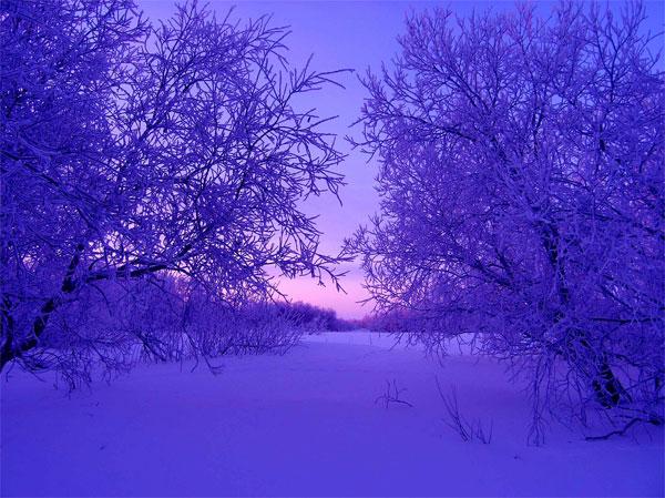 Смотреть фильм цвет белого снега