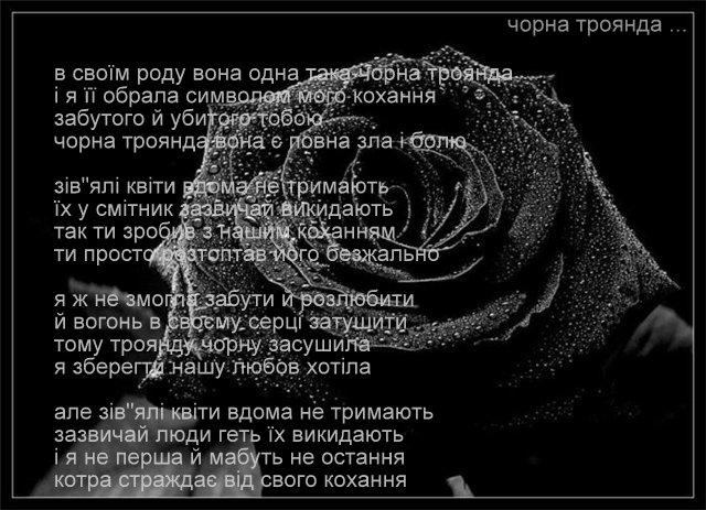 Сайт поезії вірші поздоровлення у