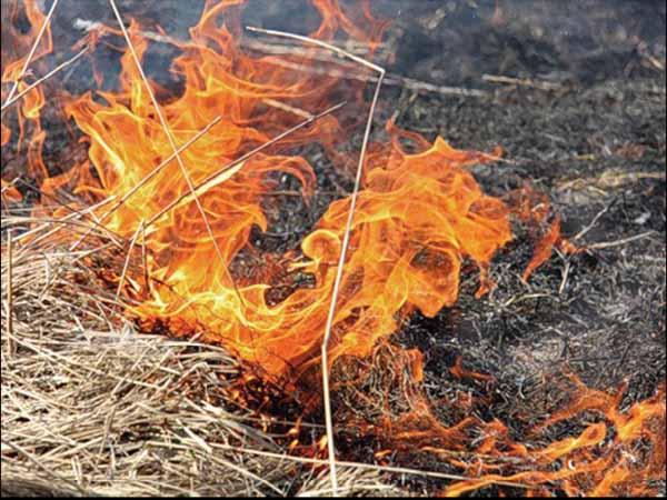 35 сообщений о возгорании сухой травы поступило пожарным Воткинска за неделю / Известия Удмуртской Республики