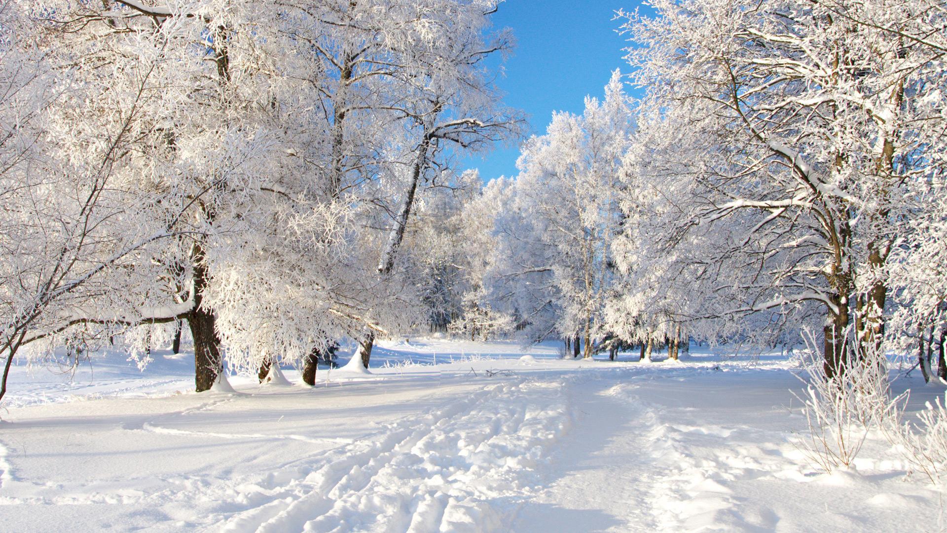 Скачати безплатно фото зими 27 фотография
