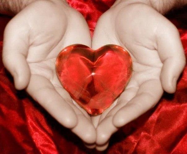 """Влюбленным парам в День святого Валентина предлагают сдать кровь """" Общество """" K-News: Новости Кыргызстана, Киргизии"""