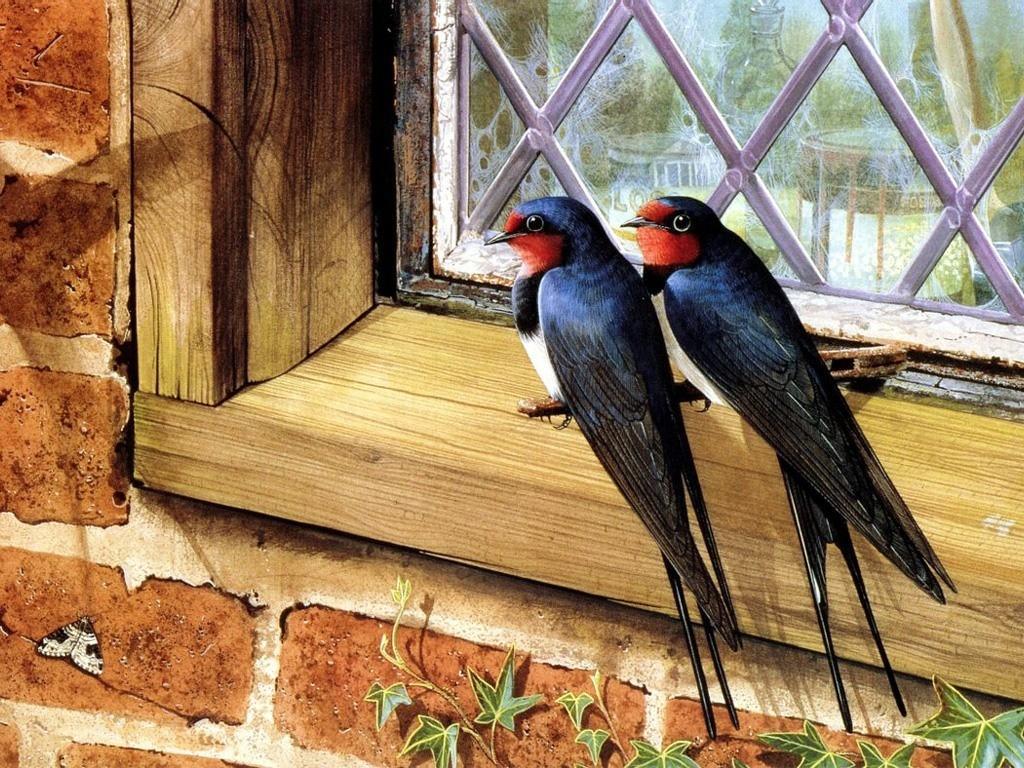 Птицы весной картинки 2