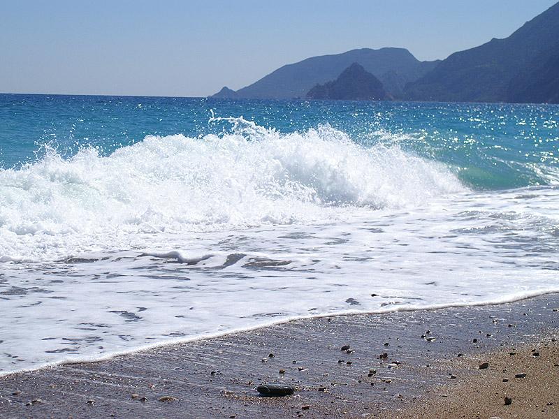 съездить на море. magnify.  Показать картинку полностью.