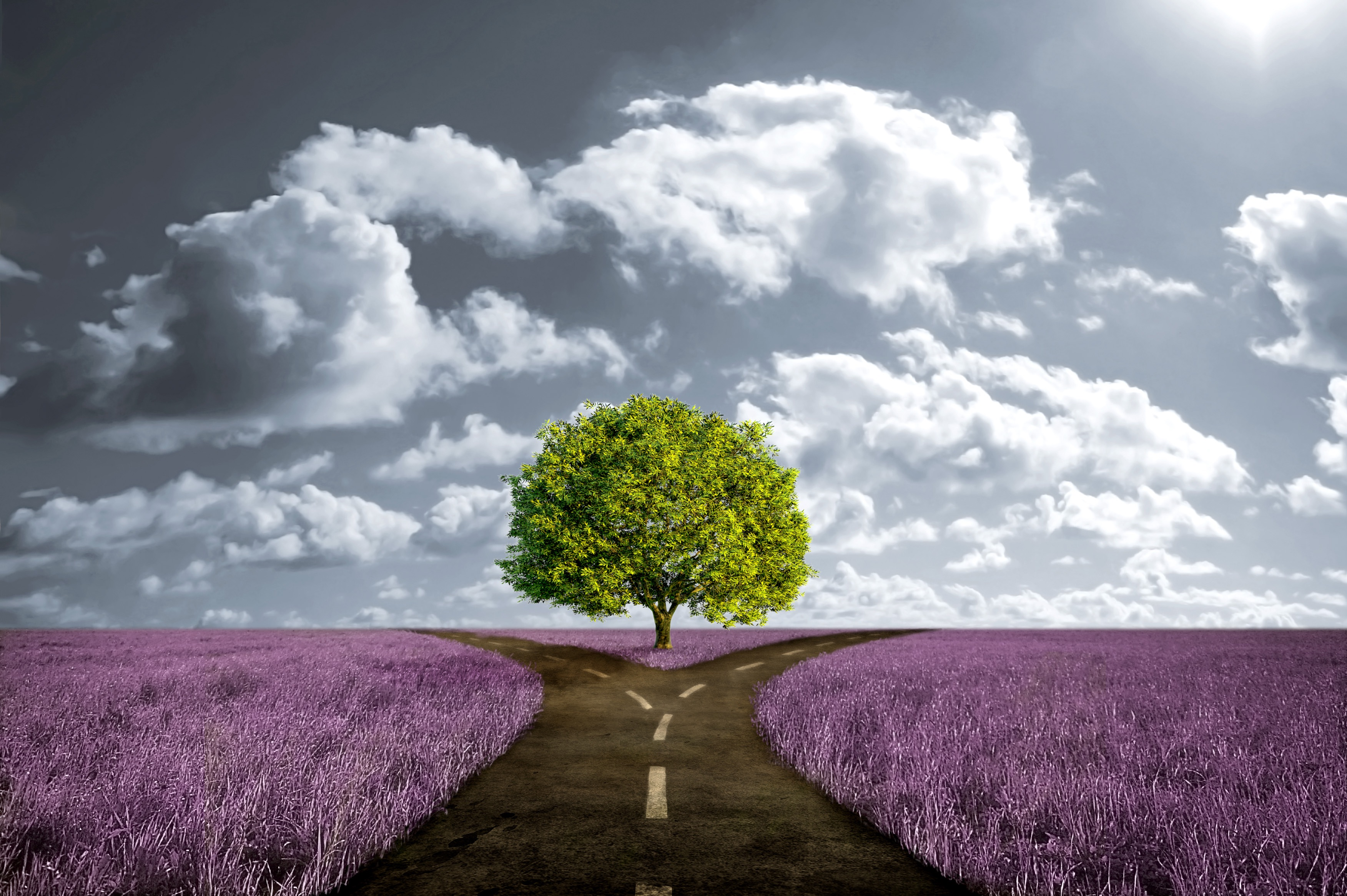 Как сделать правильный выбор - Психологос 42