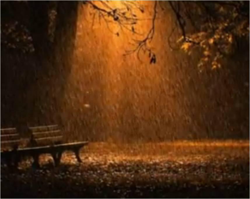 Эротика золотой дождик дождик 5 фотография