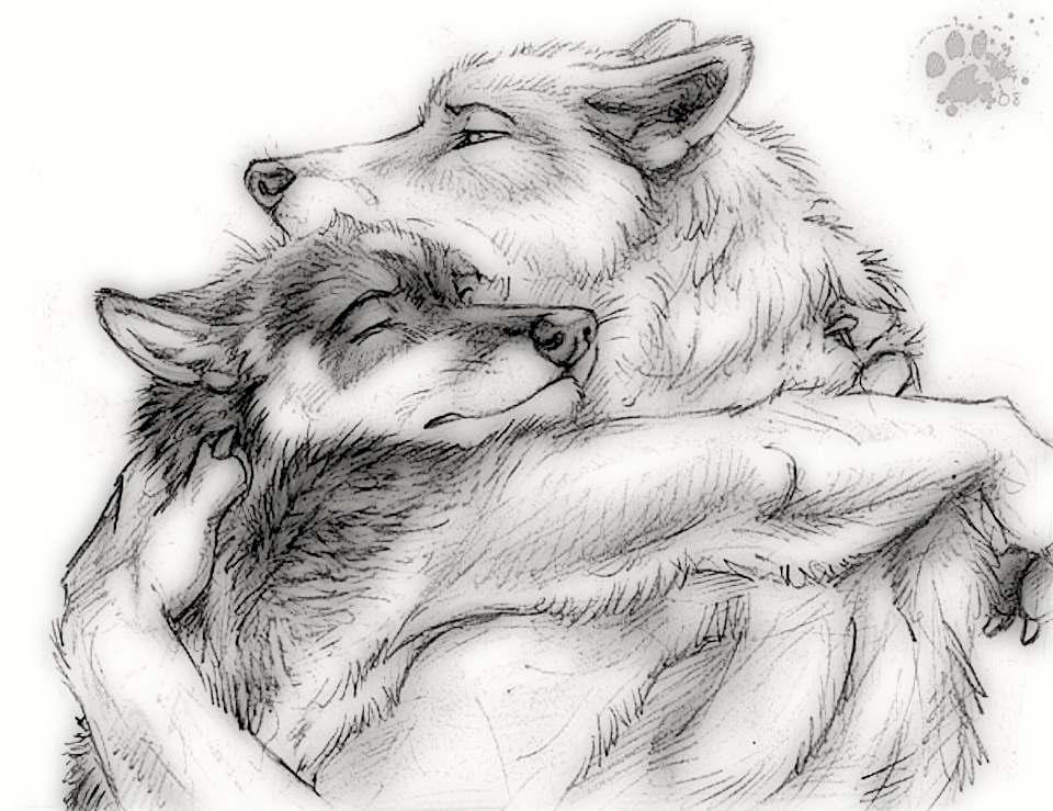 Фурри волки с людьми 1 фотография
