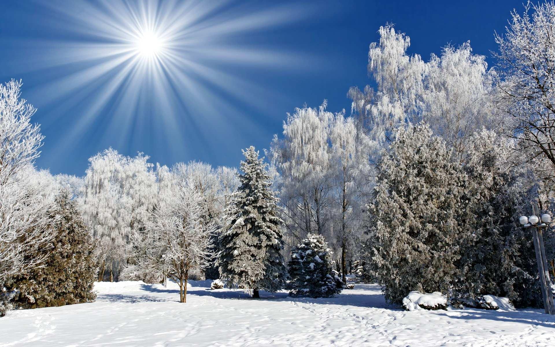 Скачати безплатно фото зими 22 фотография