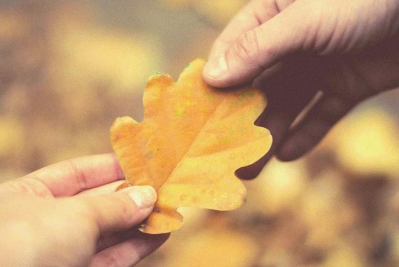 Леся Геник :: Ще маю надію на осінь